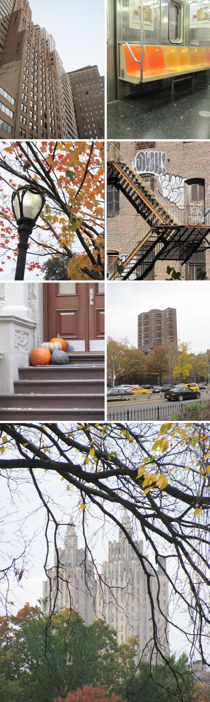 autumn_blog-grids-04